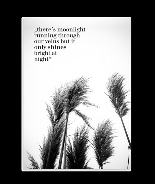 "Poster - Moonlight ""Mondschwein"""
